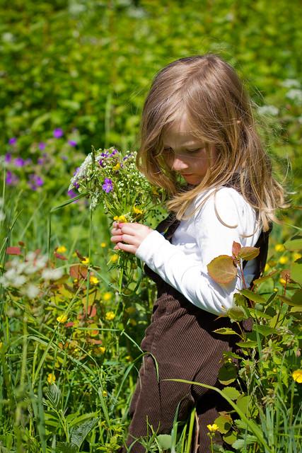 I blomsterenga