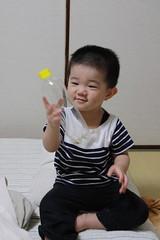 ペットボトルで遊ぶとらちゃん(2012/6/10)
