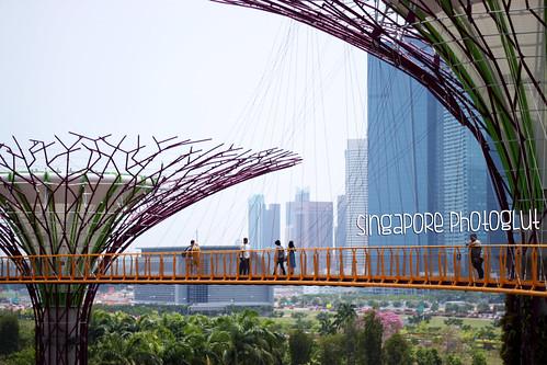 Singapore Photoglut