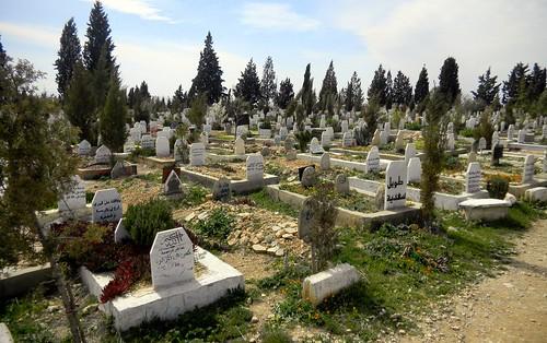 famille algérie cimetière tombes cimetières sétif sidelkhier algérie2016
