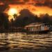 Golden Sunset by Vineet Radhakrishnan