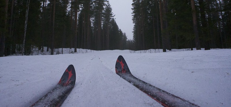 Skis in the Mist