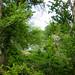 αναχώματα 24-04-2012 056.jpg