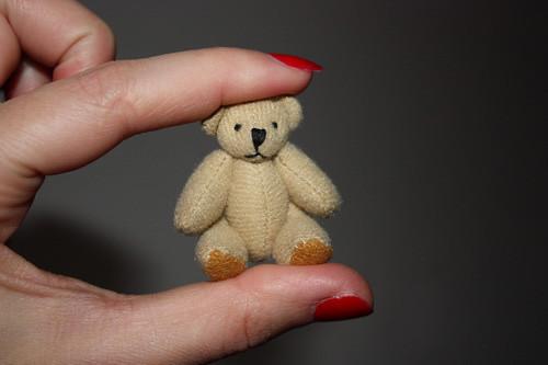 Дом Мечты №29 Игрушка медведь, книжная полка