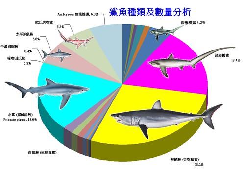 鯊魚種類及數量分析。(圖片來源:荒野保護協會)
