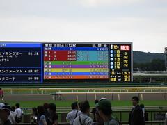 Tokyo Racecourse in Fuchu