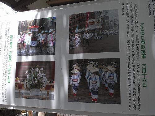 ささゆり園@大神神社-11