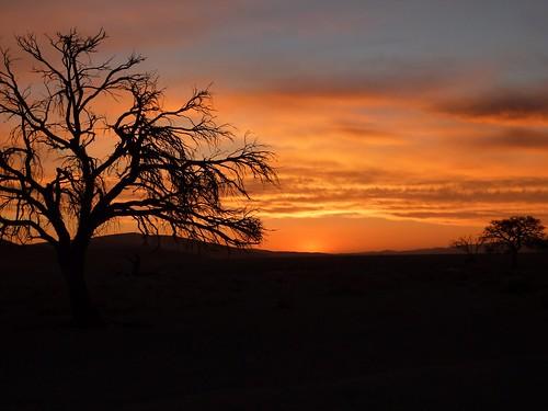 Namibia Namib Desert-3