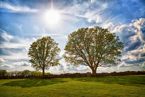 park trees sky sun nature clouds landscape shadows farm vignette wi middleton stonefence popefarmpark tonemapping canonefs1585mmf3556isusm