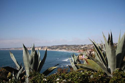 Coastal Walk, La Jolla, CA