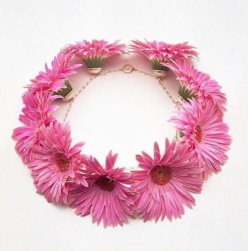 Virágok Világa - Világok Virágai