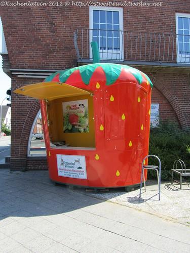 Erdbeere in Kronshagen 2012