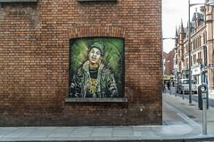 Dublin Street Art (Corner Of Fade Street)