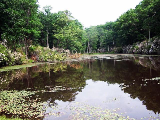 Westmoreland Park Nature Playground