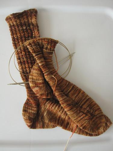 Darjeeling Socks