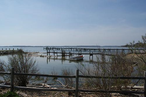 Bushwood Cove, Bushwood