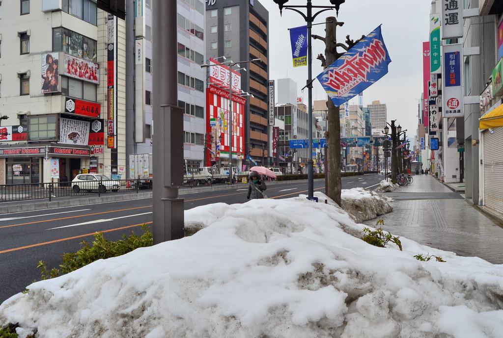 Snowy Yamagata