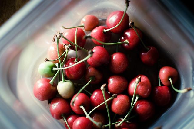156:366, bowl full of cherries