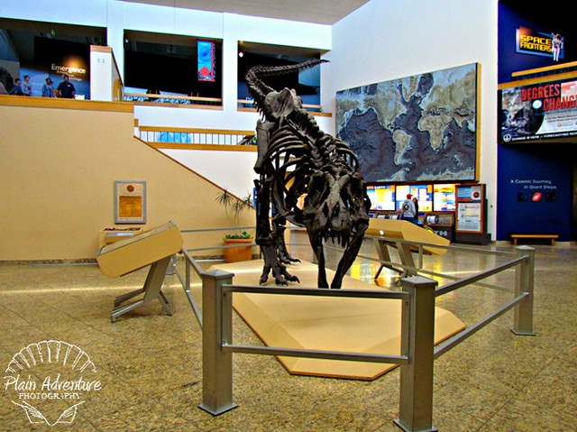 New Mexico Museum of Natural History and Science – Albuquerque