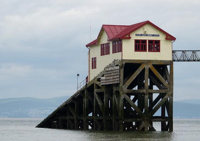 27403 - Kittiwakes, Mumbles Pier