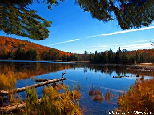 Unspoiled Nature - Scenic Autumn Lake Reflection by Chantal.PhotoPix