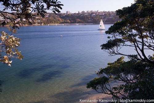 Manly scenic-2102