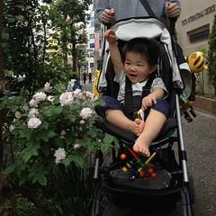 散歩だGO! (2012/5/20)