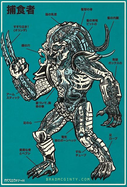 predator33