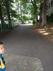 朝散歩 (2012/6/2)