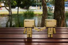 Mr Romantic