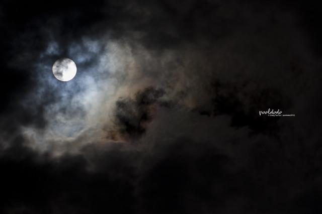 [astronomy] Transit of Venus