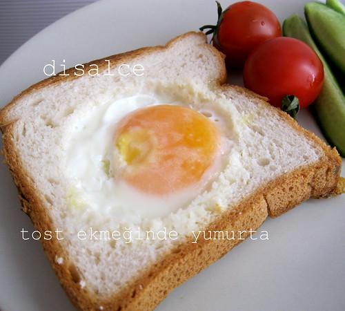 kahvaltılık-tost ekmeğinde yumurta