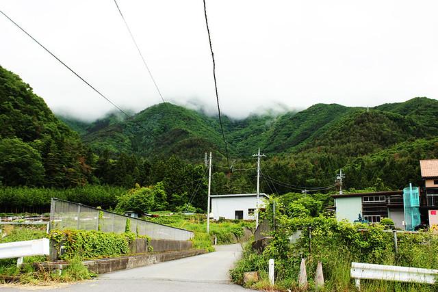 滝子山_10