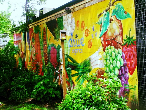 06-22-12 Organic Wall Art by roswellsgirl