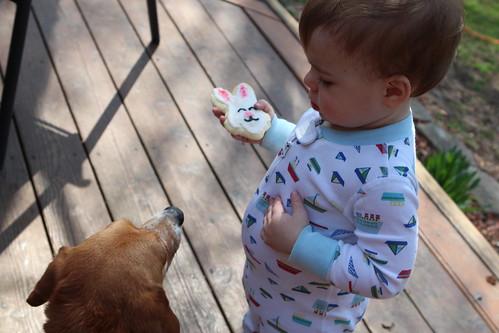 Elliott Contemplating Feeding Pete his Bunny Cookie