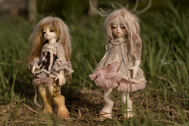 Grassland Fauns 02