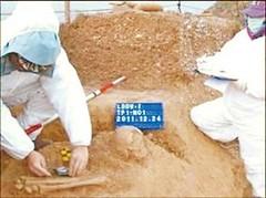 中研院研究員陳仲玉率領的考古隊,在亮島「島尾一號」遺址挖掘的情形。(圖/中時電子報)