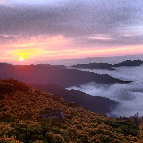 taiwan normal 台灣 嘉明湖 雲海 日出 登山 向陽山 三叉山 iphoneography instagramapp