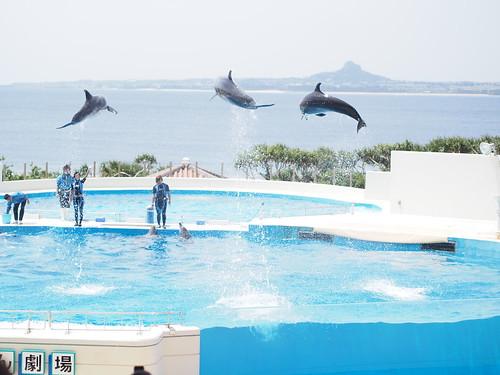 沖縄旅行 2012-04-08 13-19