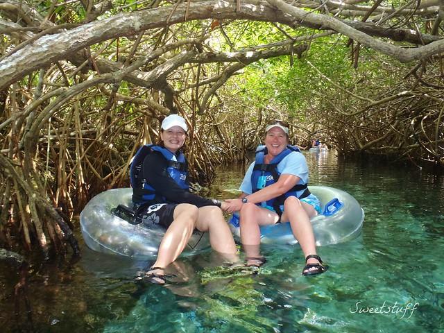 Mangrove love