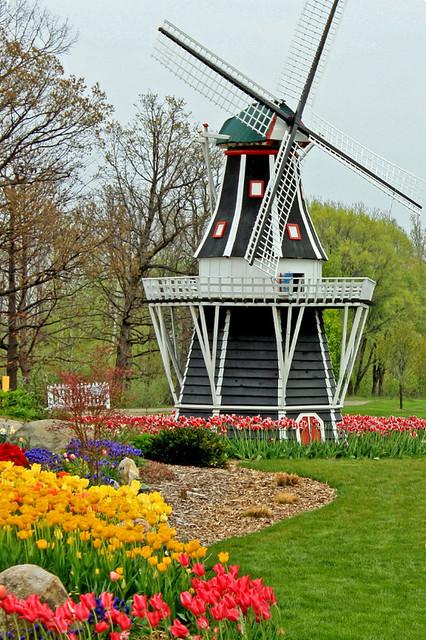 Windmill Island Tulip Time Flickr Photo Sharing