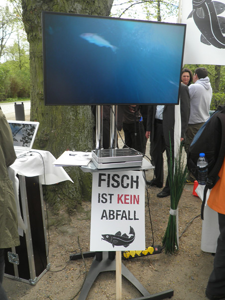 fishfight9w