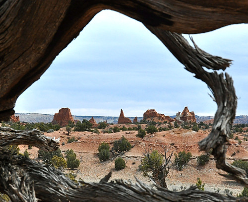 Kodachrome Basin: Framed View