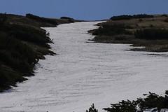 Chopok - květnový skialpový fotoreport