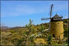 Y Don Quijote, ¿donde está?