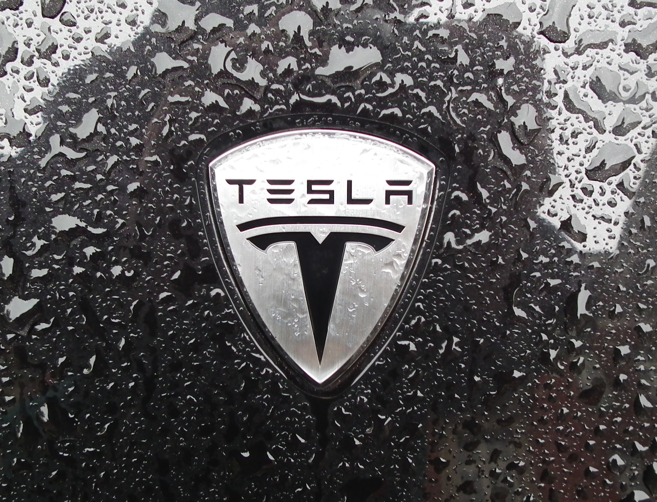 Tesla Logo Flickr Photo Sharing
