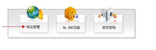 新网域名DNS管理页面