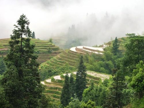 C-Guangxi-Pingan-Terrasse des 7 etoiles (54)