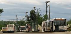 Brandon Transit - Modern