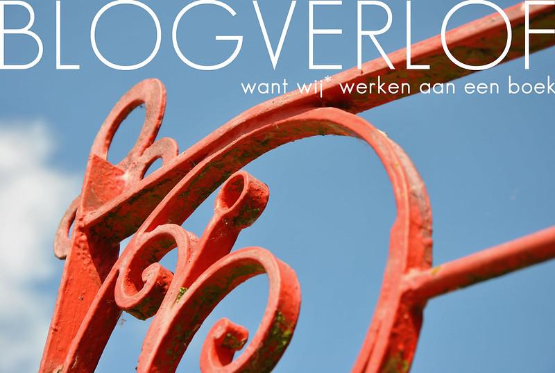 blogverlof - boek